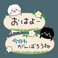 [LINEスタンプ] ふきだしスタンプ♡ネコとあいさつ(再販)