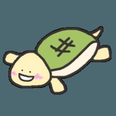繊細な亀さん