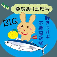 [LINEスタンプ] BIG土佐弁好きウサギ応援高知隊