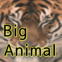 動物写真のビッグスタンプ日常使い