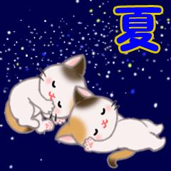 [LINEスタンプ] 三毛猫ツインズ 夏~!