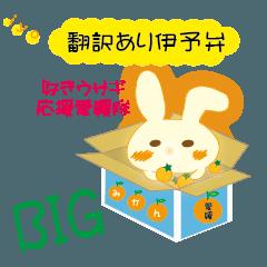 [LINEスタンプ] BIG伊予弁好きウサギ応援愛媛隊