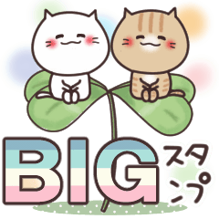 [LINEスタンプ] ねこまる【トラシロ】のBIGスタンプ