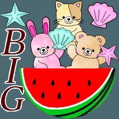 BIG大人可愛い♥敬語ふんわりくまたんの夏