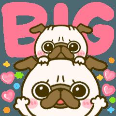 [LINEスタンプ] BIG♡パグちゃん