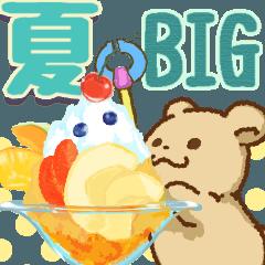 くま君の楽しい夏(BIG)