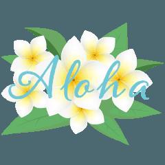 BIG ALOHA HAWAII